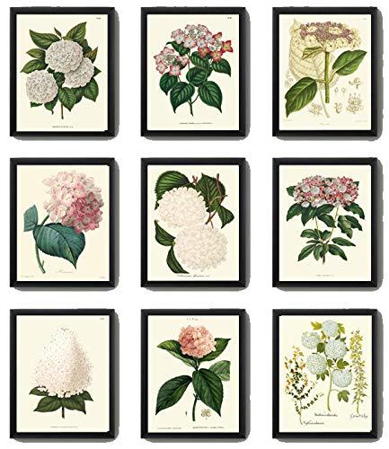 Flower Print Wildflower Bouquet Illustration Dusty Pink Floral Art Print Flower Illustration Flower Painting Floral Bouquet Art Print