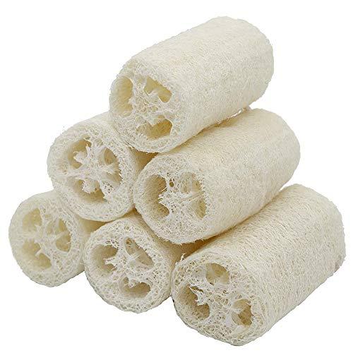 6 Piezas de Esponja Vegetal Natural, Luffa Exfoliante Natural, Esponja Natural de Esponja Vegetal, para Limpieza y Lavado del Hogar. Limpiar Ollas, Platos y Parrillas