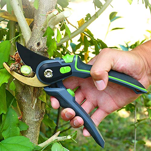 Garden Pruners, Secateurs, Pruning Shears for Gardening Heavy Duty with Rust Proof Blades, Best Bypass Pruner Garden Shears Scissors Professional Gardening Tools with Built-in Springs,Gold