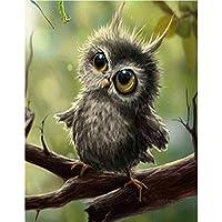 油絵 数字キットによる絵画 塗り絵 大人 手塗 DIY絵 デジタル油絵 動物の鳥-16x20インチ(diyの木製フレーム)