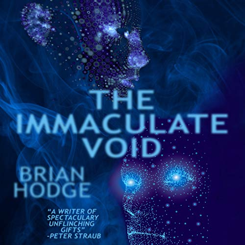The Immaculate Void cover art
