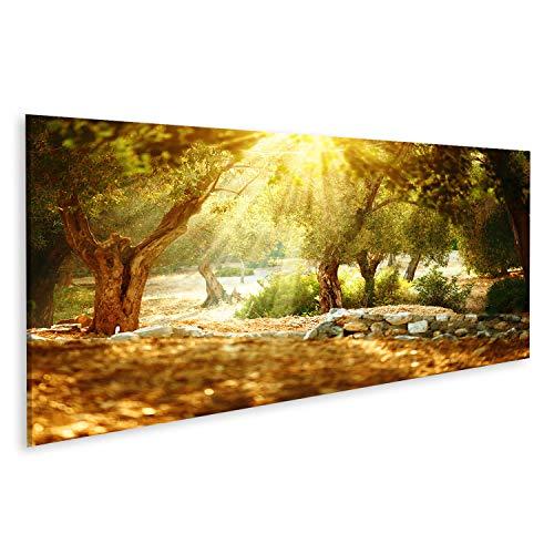 islandburner, Bild auf Leinwand Olivenbäume Garten. Mediterraner Olivenhain mit altem Olivenbaum Wandbild Leinwandbild Kunstdruck Poster 120x40cm - Panorama