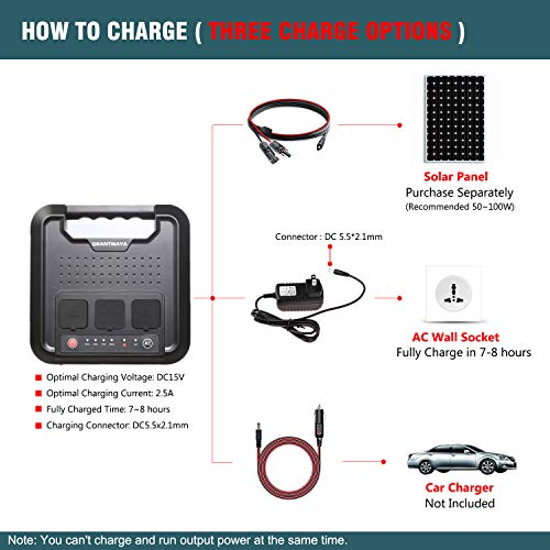 GrantMaya Portable AC Power Bank, 300W 220Wh Pure Sine Wave Power Station Inverter Generator Power Charger Battery Packs with 110V AC Outlet 12V DC USB for Outdoors Camping Fishing CPAP Emergency