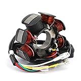 LOGGO Generator Stator Bobina Moto Ingition estator del generador de la Bobina fit fit for 250 300 EXC XC TE 125 XCW 2007-2019 55139004000 55139004100 fit fit for Husqvarna TX125