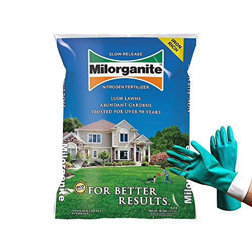 Milogranite 0636 Organic Nitrogen Fertilizer, Safer and Slow Release, for Lawn and Grass, Granular Nitrogen Fertilizer 32 lbs (Bundled With Pearson Protective Gloves)
