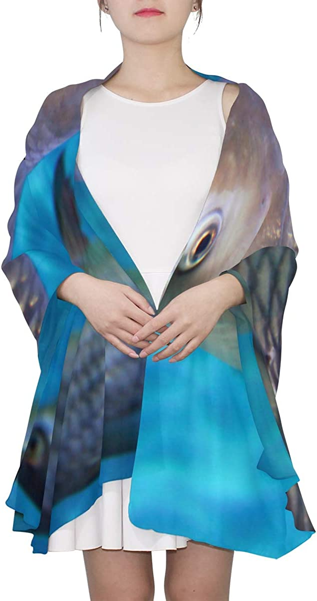 Auspicious Beautiful Koi Unique Fashion Scarf For Women Lightweight Fashion Fall Winter Print Scarves Shawl Wraps Gifts For Early Spring
