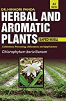 HERBAL AND AROMATIC PLANTS - 44. Chlorophytum borivilianum (Safed musli)