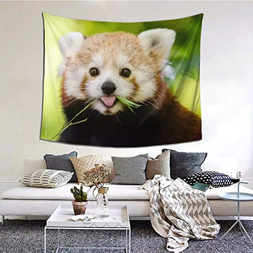 Perfect household goods Panda Roux Tapestry Wall Art Hanging Home Living Room Bedroom Decor 60 * 51inch