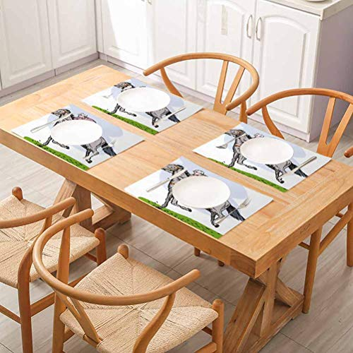 FloraGrantnan Decor Tableware Durable Dinner Table Placemat, Animal Sketchy Horse Racing Theme Pony Stallion Riding on Field Retro Illus, Dinner Party, Barbecue, Buffet, Set of 4