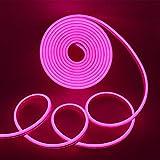 Xunata Tira de luces LED de neón, 5 m, 12 V, 2835, 600 ledes, resistente al agua, flexible, incluye fuente de alimentación de 5...