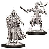 Dungeons & Dragons Nolzur`s Marvelous Unpainted Miniatures: W9 Male Elf Paladin