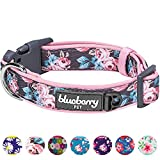 <span class='highlight'>Blueberry</span> <span class='highlight'>Pet</span> Soft & Comfy Welcoming Rose Flower Prints Girly Adjustable Padded Dog Collar, Medium, Neck 37cm-50cm, Adjustable Collars for Dogs