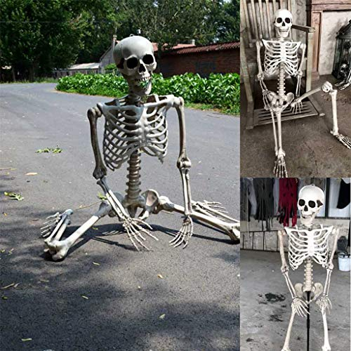 Buy Bargain Halloween Skeleton - 170CM Human Full Size Posable Skeleton Life Size Haunted House Deco...