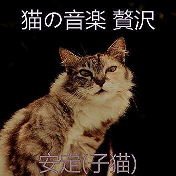 安定(子猫)