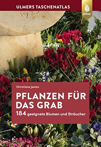 Pflanzen für das Grab: 184 geeignete Blumen und Sträucher