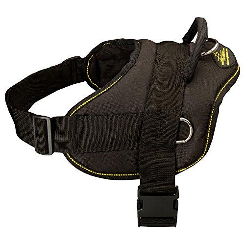 Harnais pour chien en nylon multifonctions pour marche et Formation – Taille XS