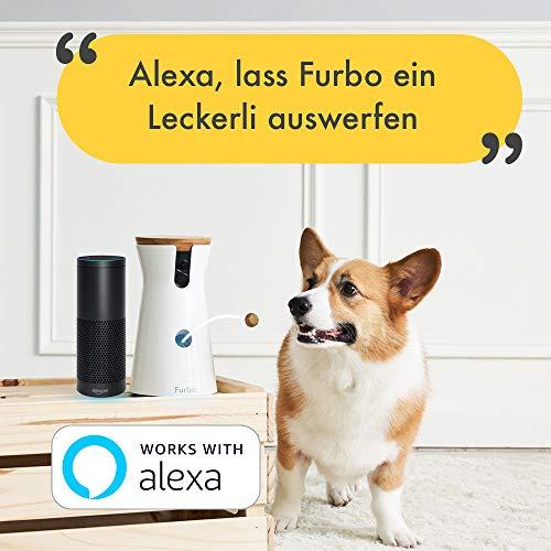 Furbo Hundekamera: Full-HD-Wifi-Haustierkamera mit 2-Wege-Audio, Leckerli-Ausgabe und Bell-Alarm (bekannt aus VOX hundkatzemaus) - 5