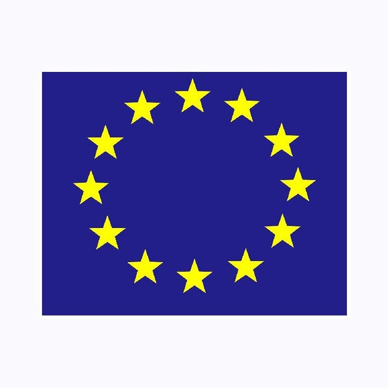 VIVIANE EU Flag, 8 Sizes, World Flag,European Union Flag (Size   288X192cm)