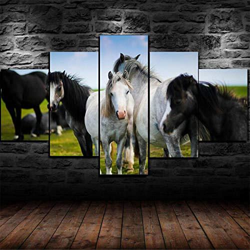IMXBTQA Impresión En Lienzo 5 Piezas Cuadro sobre Lienzo,5 Piezas Cuadro En Lienzo,5 Piezas Lienzo Decorativo,5 Piezas Lienzo Pintura Mural,Regalo,Decoración Hogareña Caballos Prado Animal