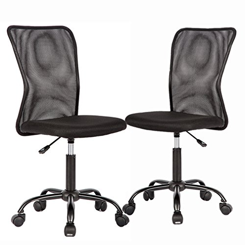 Ergonomic Office Chair Desk Chair Mesh Computer Chair with Lumbar Support No Arms Swivel Rolling Executive Chair for Back Pain 2 Pack (Black)