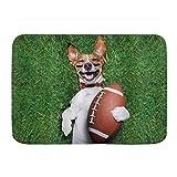 Mozenou Badteppich Teppich rutschfest,Sport-Fußball-Hund, der einen Rugby-Ball hält und lautes lustiges Comic-Witz-Bild auslacht,Mikrofaser Moderne Badteppiche Weiche Badematte Teppich,29.5'x 17.5'