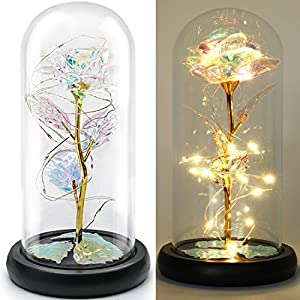 FLORECORD Beauty and The Beast Rose Gift Enchanted Colorful Led Flower Galaxy Rose Light in Glass Dome, Unique Crystal Gifts for Christmas, Valentine's Day, Mother's Day, Girl's Birthday