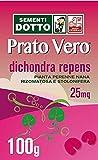 Sdd 40030480 Prato Dichondra Repens, Verde, 12x20x2 cm