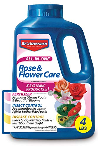 BIOADVANCED 701116E All-in-One Rose and Flower Care, Fertilizer, Insect Killer, and Fungicide, 4-Pound, Ready-to-Use Granules