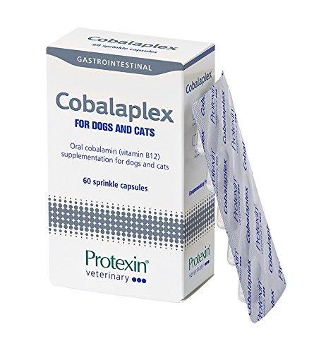 Protexin Cobalaplex 60 Kapseln, Ergänzungsfuttermittel für Hund und Katze, Orales Cobalamin (Vitamin B12) zur Unterstützung des Verdauungstraktes.