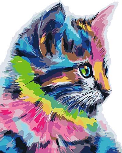 Hanzeze Pintar por Numeros Gato de Color DIY Lienzo de Regalo de Pintura al óleo para Adultos niños Pintura por número Kits Decoraciones para el hogar 40x50cm Sin Marco