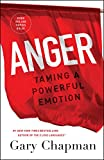 Best Anger Management Books - Anger: Taming a Powerful Emotion Review