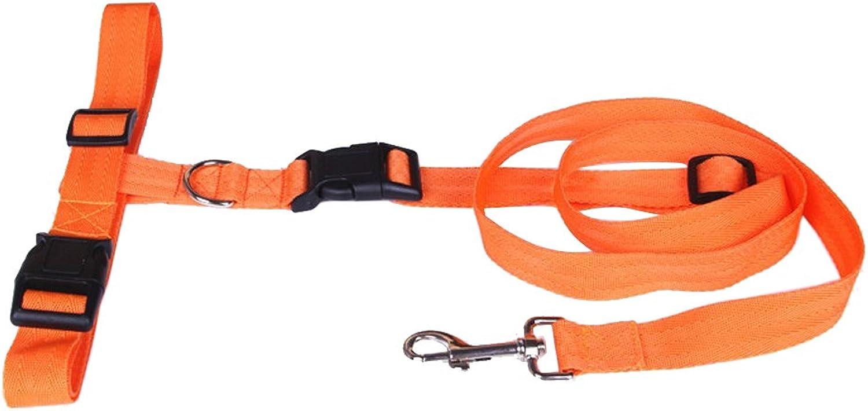 CUPET(TM) 1 PCS Adjustable Traction Collar Nylon Dog Leash Rope Training Slip Lead Strap (orange)