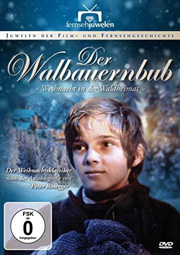 Weihnacht in der Waldheimat
