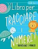 Impariamo i numeri: Libro per tracciare i numeri: Età 3+: Libro di attività con i numeri...