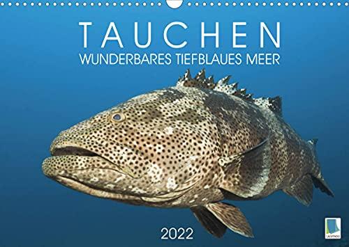Tauchen: Wunderbares tiefblaues Meer (Wandkalender 2022 DIN A3 quer)