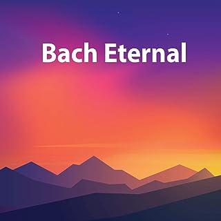 J.S. Bach: Sonata for Flute or Violin No.4 in C, BWV 1033: 3. Adagio