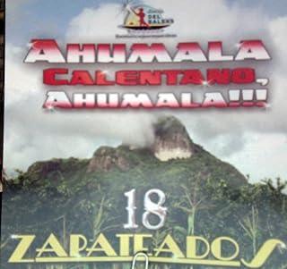 Varios Artistas (18 Zapateados Ahumala Calentano) 349