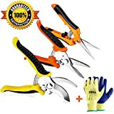 Best Flower Shears - Wevove 3 Pack Garden Pruning Shears Stainless Steel Review