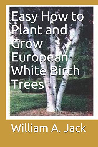 Easy How to Plant and Grow European White Birch Trees (Trees for Home and Garden Landscaping)
