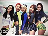 TradePlace EXID イーエックスアイディー グッズ / A3 ポスター 12枚 ステッカー シール 1枚セット - A3 Size Poster 12sheets Sticker 1sheet 韓流 K-POP 韓国製