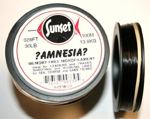 Amnesia Monofil, 100m schwarz schwarz 30lb