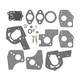 Mannial 495606 Carburetor Overhaul Repair Rebuild Kit fit 495606 494624 Pulsa Jet Carb 80200 81200 82200 112200 130200 133200 135200 136200 3 Thru 5 HP Horizontal Engines