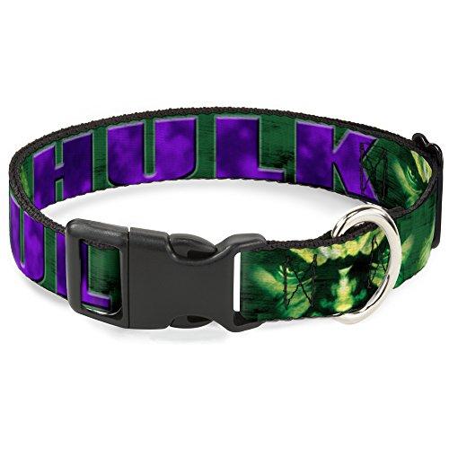 Buckle-Down Hundehalsband, Kunststoff-Clip, Hulk-Gesicht, Nahaufnahme, Grün, Lila, 38,1 bis 66 cm, 2,5 cm breit, 1