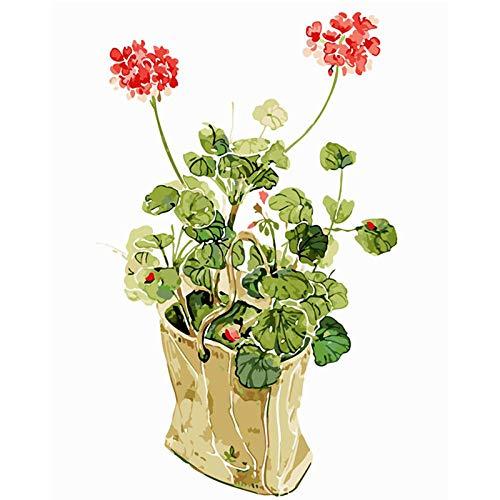 KKASD Fresh Geranium clean Glass Flower Draw by line by Numbers DIY Picture Adult Painting Atmosphere, Decoration, Decoration 40x50cm Mit Rahmen