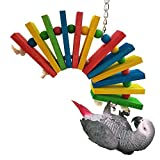 Hypeety Colorful Wooden Bird Toys for African Greys Amazon Cockatiel Parakeet Parrots Cage Chewing Toy (L)