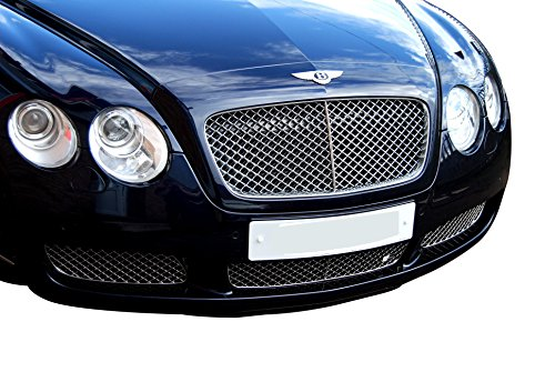 Zunsport Compatible with Bentley Continental GT Lower Grille (Grill) Set - Silver Finish (2003 to 2007)