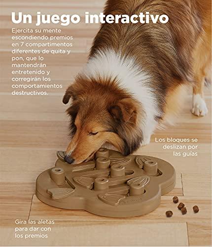 Nina Ottosson por Outward Hound Dog Hide n' Slide - Dispensador interactivo de recompensas - Rompecabezas para perros - Marrón