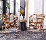 Safavieh Home Adriana Coastal Honey Brown Wash Rattan (Set of 2) Accent Chair