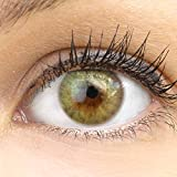 GLAMLENS lentillas de color verdes Bozen Green + contenedor. 1 par (2 piezas) - 90 Días - Sin Graduación - 0.00 dioptrías - blandos - Lentes de contacto verde de hidrogel de silicona
