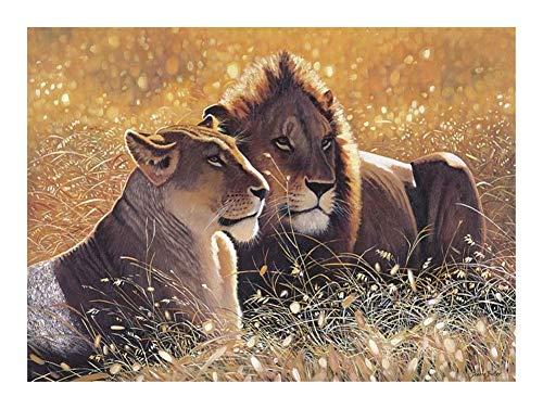 Puzzle 1000 Stück Wild Animal Series The Lion King Paar 30 von 20 Zoll (75.5x50.5cm) -Jeder Stück ist EIN Unikat, paßt Alles zusammen Perfekt for Erwachsene for Kinder